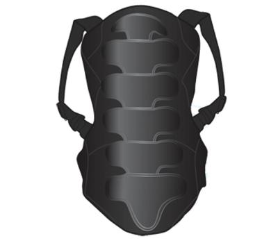 Защита спины DSRP-111